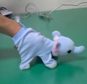 ゾウの手袋2